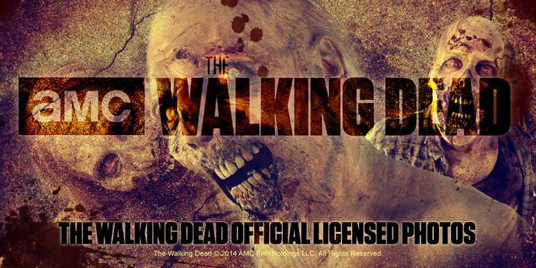The Walking Dead Merchandise Banner Design